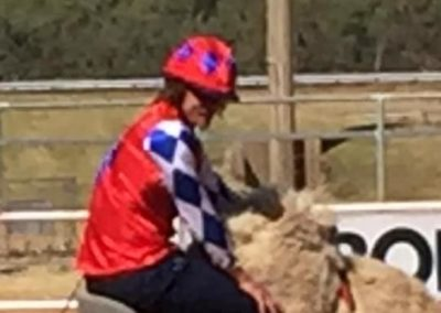 Honeybadger on a Camel? At the end of the Honeybadger Cup at the Boulia camel races