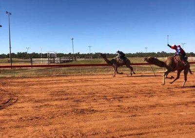Boulia Camel Race — in Boulia, Queensland