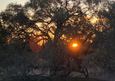 Sunrise at the Town Common — in Innamincka, South Australia